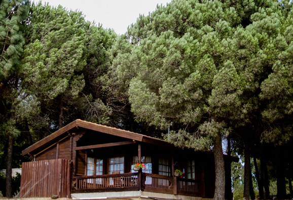 Kibbutz Ortal Country Lodging